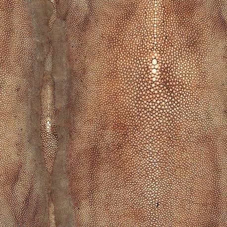 Papier peint vinyle Précieux Cuivre, Jean Paul Gaultier